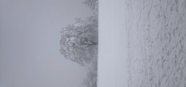 Zima, Zima, piękna zima!